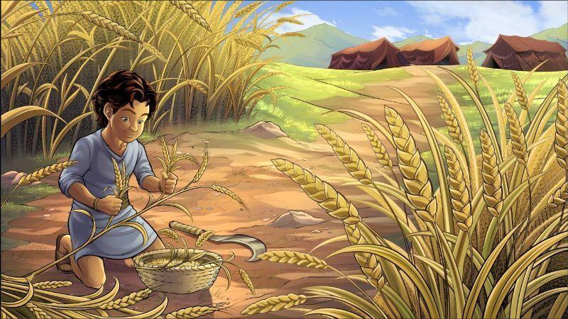 Reuben in the field