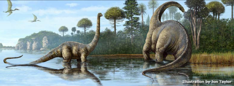 Image of two brontosaurus walking through water along the tree line used as reference