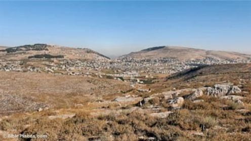Shechem Topography