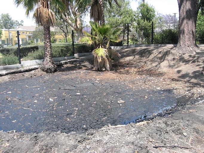 Image 3 of an actual tar pit